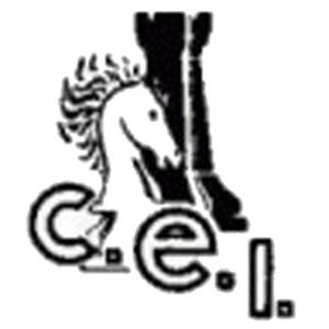 XIVè Torneig d'escacs d'igualada i de l' Anoia @ Espai Cívic Centre (Antic Col·legi Maristes)